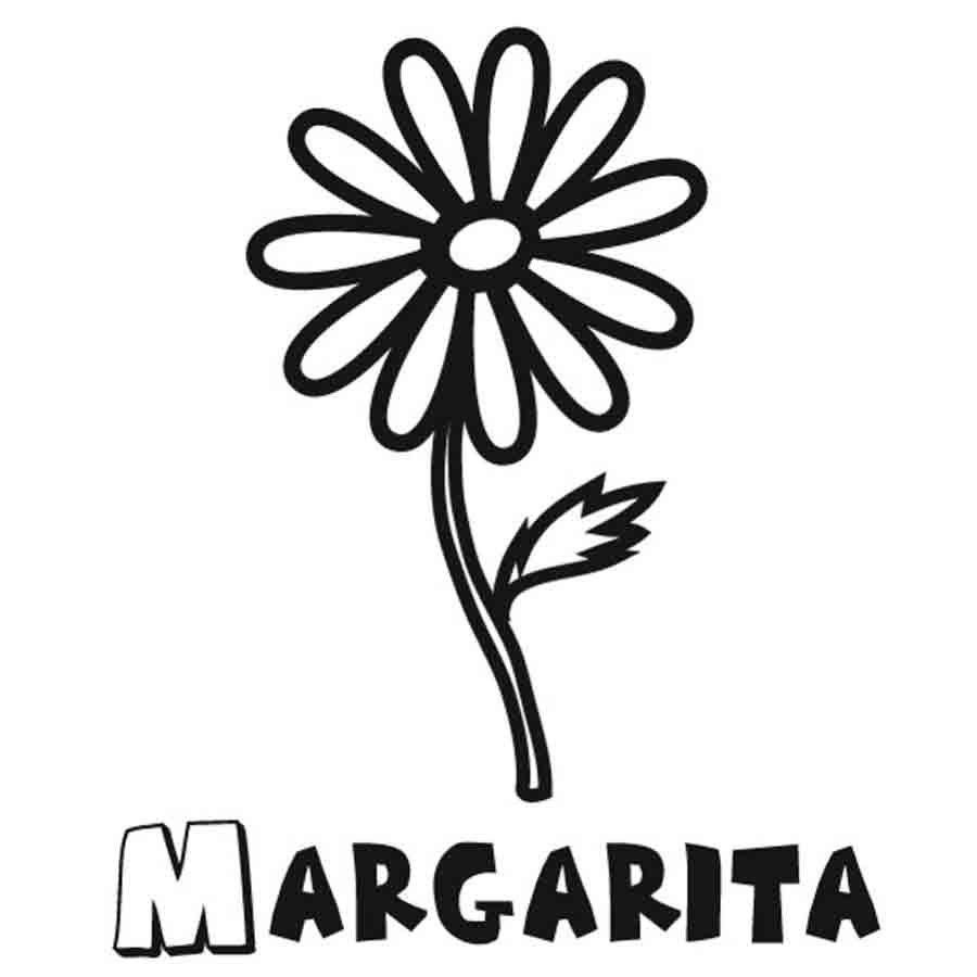 Dibujo de margaritas para colorear sketch coloring page for Nombres d plantas ornamentales