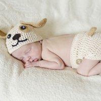 Disfraz de punto para bebés. Perro
