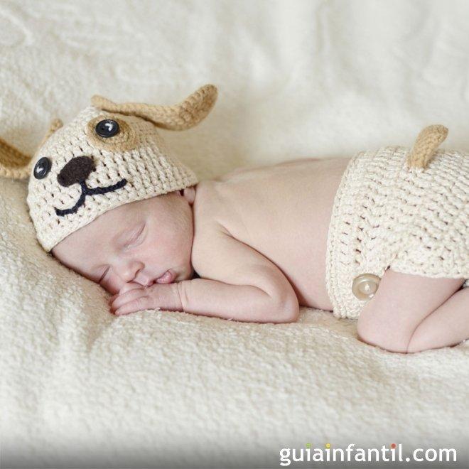 Disfraz de punto para bebés. Perro - Disfraces hechos de punto para