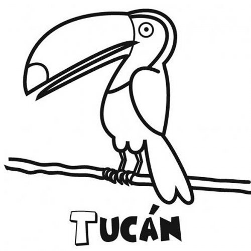 Dibujo para colorear de tucán