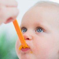 Introducción de nuevos alimentos para bebés con alergias
