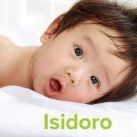 Día del Santo Isidoro, 26 de abril. Nombres para niños