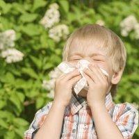 Todo sobre las alergias en los niños