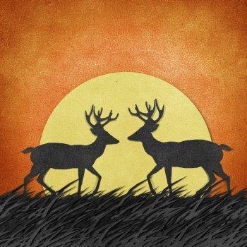 El ciervo y los bueyes