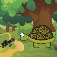 Cuentos para niños. Uga la tortuga