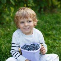 Hierbas para combatir la enuresis infantil