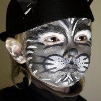 Maquillaje para niños. Un gato