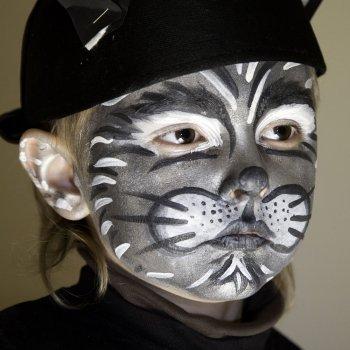 Un gato. Maquillaje para niños