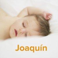 Día del Santo Joaquín, 26 de julio. Nombres para niños