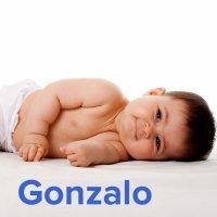 Día del Santo Gonzalo, 25 de noviembre. Nombres para niños