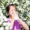 La alergia a la gramínea en los niños