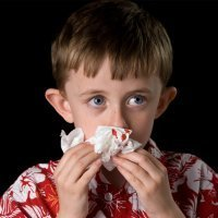 ¿Por qué les sangra la nariz a los niños?
