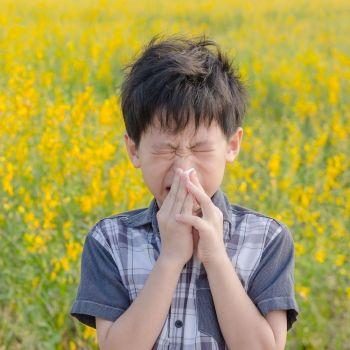 Respuestas a dudas sobre alergias alimentarias