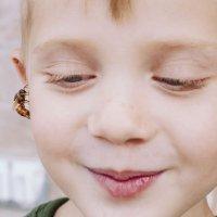 Qué hacer si al niño le pica una abeja o una avispa