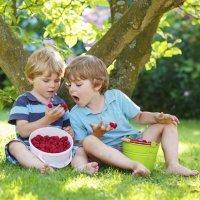 Menú de primavera para niños con bajo peso