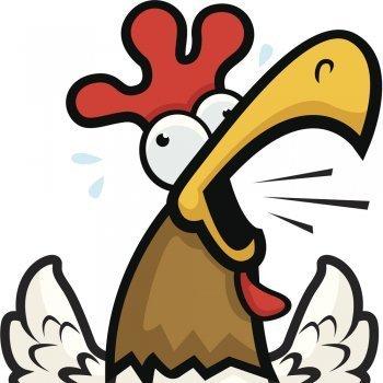 El gallo Torcuato