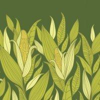 La leyenda del maíz. Cuentos de México para niños