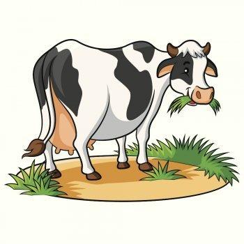 El baile de las vacas