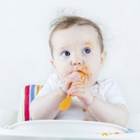El desarrollo del gusto en los bebés