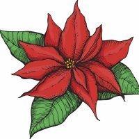 La flor de Nochebuena. Leyenda navideña de México
