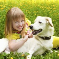 Chistes de animales para niños