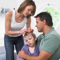 Mitos y verdades sobre los piojos de los niños
