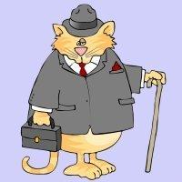 El señor don gato. Canciones de animales