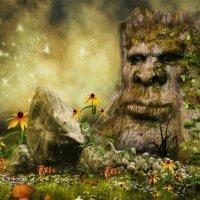 The Enchanted Forest. Cuentos tradicionales en inglés para niños