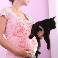 Toxoplasmosis en el embarazo