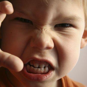 La conducta agresiva en los niños