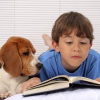 Cuentos infantiles de mascotas
