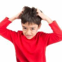 Piojos: todo lo que debes saber sobre la pediculosis