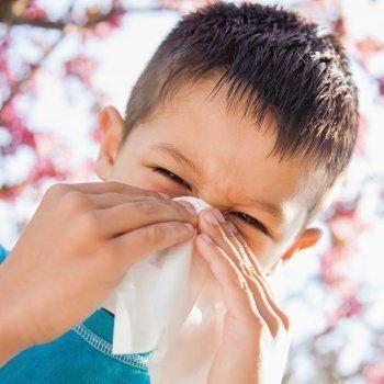 10 remedios para combatir el polen