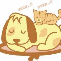 Mis mascotas. Poema corto con rima para niños