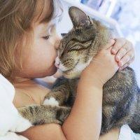 Cómo tratar las mordeduras de gato en los niños