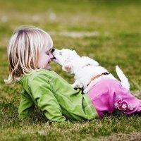 El contagio de la rabia en los niños