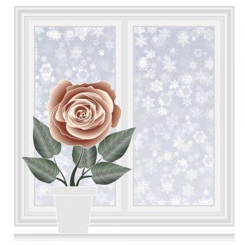 La rosa de Navidad