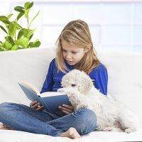 La relación del niño con su mascota