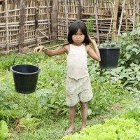 Los riesgos y abusos del trabajo infantil