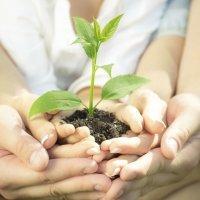 Cómo enseñar a los niños a cuidar de nuestro planeta