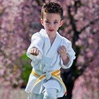 ¿Tu hijo necesita de una actividad extraescolar?