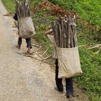 Niños trabajando: ¡eso tiene que acabar!