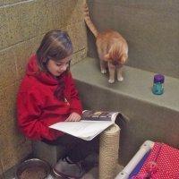 Por qué es bueno que los niños lean a los animales