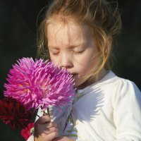 Dalia: un nombre primaveral para una niña que nace en otoño