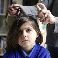 Remedios caseros contra los piojos de los niños: ¿funcionan?
