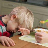 Premios y regalos para que los niños coman