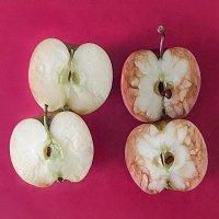Una maestra explica con dos manzanas qué es el bullying