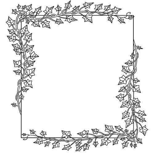 Adivinanza: ¿Cuál será la planta de hojas verdes?