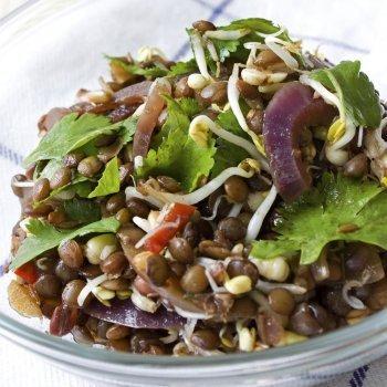 Ensalada de lentejas con soja