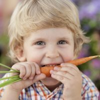 Recetas con zanahoria, dulces y saladas para niños